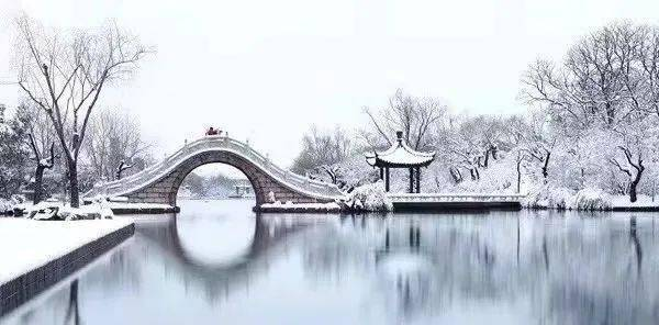 杭州,穿越独角兽丛林