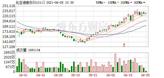 大和:升比亚迪(01211)目标价至19%至276港元 重申买入评级