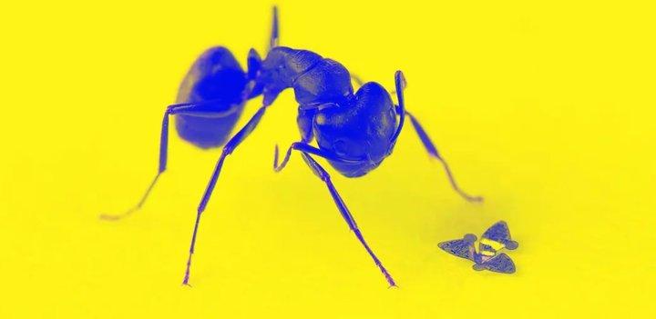 科学家造出世界上最小的飞行器,比一粒沙子还小